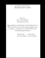NGHIÊN CỨU ẢNH HƯỞNG CỦA PHÂN BÓN NPK (3-6-1) ĐẾN SINH TRƯỞNG CỦA LÁT HOA (Chukrasia tabularis A.Juss) GIAI ĐOẠN 1 - 3 THÁNG TUỔI TẠI VƯỜN ƯƠM CƠ SỞ 3 TRƯỜNG ĐẠI HỌC HỒNG ĐỨC
