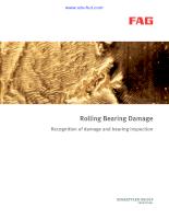 Rolling Bearing Damage