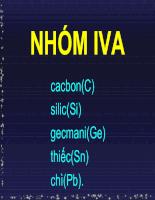 Các nguyên tố nhóm IVA và VA