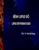 Bài giảng: Bệnh lupus đỏ