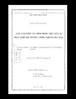 Các giải pháp tài chính nhằm thúc đầy sự phát triển của thị trường chứng khoán Việt Nam.pdf