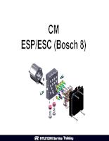 Training hệ thống ESP của xe ô tô Hyundai Santafe CM
