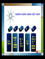 Triển vọng phát triển ngành ngân hàng Việt Nam đến 2010.pdf