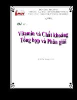 Vitamin và chất khoáng – Tổng hợp và phân giải