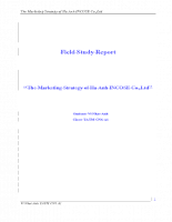 The Marketing Strategy of Ha Anh INCOSE Co.,Ltd.doc