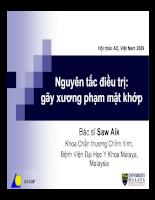Điều trị gãy xương phạm khớp (Hội thảo AO, Việt Nam 2009)