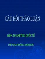 Câu hỏi tảo luận môn Marketing quốc tế