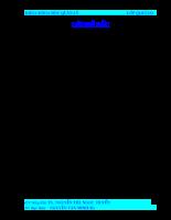Sự quản lý của Nhà nước các Công ty phát hành chứng khoán.doc