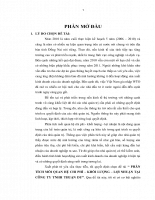 Phân tích mối quan hệ chi phí - khối lượng - lợi nhuận tại công ty tnhh thuận dư.doc