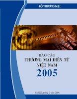 Báo cáo thương mại điện tử của việt nam năm 2005