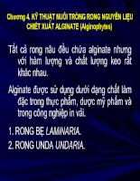 Chương 4 - Kỹ thuật trồng rong chiết xuất algin