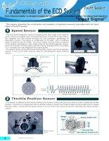 Bơm ECD-V - P - Speed Sensor