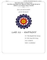Báo cáo đề tài môn quản trị mạng : LAB 12 - Haroxy