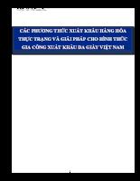 Giải pháp về nâng cao hiệu quả sự dụng phương thức gia công xuất khẩu cho ngành giày da Việt Nam.doc