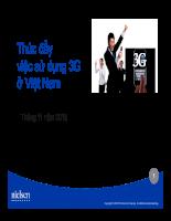 Nghiên cứu về tình hình sử dụng dịch vụ 3g ở việt nam 2010