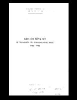 Nghiên cứu thu phát thanh kỹ thuật số stereo và thu phát hình kỹ thuật số độ phân giải