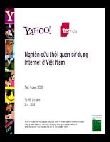 Nghiên cứu thói quen sử dụng Internet ở ViệtNam