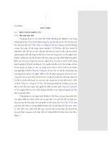 Nghiên cứu đóng góp của vốn xã hội vào các hoạt động của doanh nghiệp BĐS Việt Nam