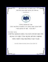 Chứng khoán hóa tài sản có rủi ro tín dụng.pdf