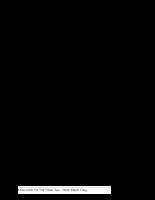 Trí tuệ nhân tạo  P1