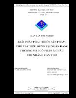 Giải pháp phát triển sản phẩm cho vay tiêu dùng tại NHTMCP Á Châu Cần Thơ
