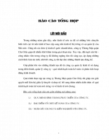 ĐẶC ĐIỂM TỔ CHỨC KẾ TOÁN CỦA CÔNG TY THƯƠNG MẠI QuẬN CẦU GiẤY.doc