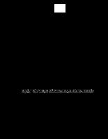Nghiên cứu tình hình phát triển sản xuất và bón phân cho chè đắng tại tỉnh cao bằng .pdf