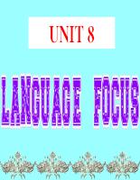 Giáo án Tiếng anh 12: Unit 8 - Language focus (NC)