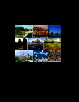 Nghiên cứu về tác động của du lịch tới môi trường