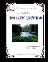 """Tiểu luận """"Hệ Sinh Thái Rừng Việt Nam"""""""