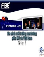 So sánh môi trường marketing của Việt Nam và EU