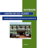 Phát triển hoạt động bao thanh toán tại Ngân hàng thương mại cổ phần Nam Việt