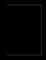 Giải gần đúng phương trình phi tuyến vi phân trên máy tính điện tử
