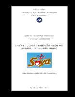 bìa in Chiến lược phát triển sản phẩm mới cho Tập Đoàn Tân Hiệp Phát - Soya đậu phộng.pdf