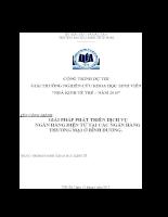 Giải pháp phát triển dịch vụ ngân hàng điện tử tại các ngân hàng TM ở Bình Dương