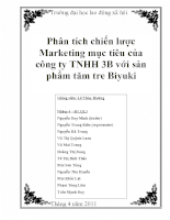 Tìm hiểu chiến lược MKT mục tiêu của công ty TNHH 3B với sản phẩm tăm tre nghệ thuật Biyuki (có kèm slide powerpoint.doc