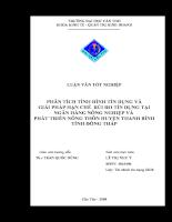 Phân tích tình hình tín dụng và giải pháp hạn chế rủi ro tín dụng tại NHNO & PTNT huyện Thanh Bình