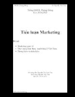 thực trạng hoạt động marketing ở Việt Nam