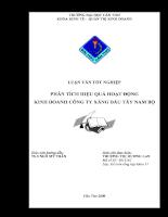 Phân tích hiệu quả hoạt động kinh doanh công ty xăng dầu Tây Nam Bộ