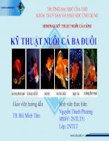 Báo cáo chuyên đề tìm hiểu về cá ba đuôi