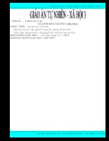 Giáo án Tự nhiên và Xã hội - Lớp 3
