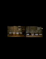 Nghiên cứu ứng dụng vi sinh vật và vi tảo lam Spirulina trong xử lý nước thải làng nghề bún Phú Đô - Phần 3