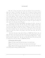 Hoàn thiện công tác Kế toán bán hàng & xác định kết quả tại Công ty TNHH Đạt Thành