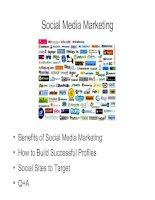 social media marketing by-seomoz