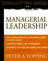 Mcgraw-Hill, eMBA Managerial Leadership, 2002