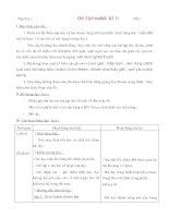Giáo án ôn tập 4