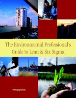 the environmental professionals guide to lean and six sigma
