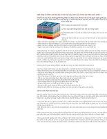 Giới thiệu về Kiểm soát Nội bộ và một số ví dụ minh hoạ về thủ tục kiểm soátx