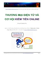 Ebook - Thương mại điện tử và Cơ hội Kiếm tiền online