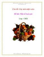 Tài liệu Chủ đề: Cây trái miệt vườn - Đề tài: Một số loại quả - Lớp : Chồi doc